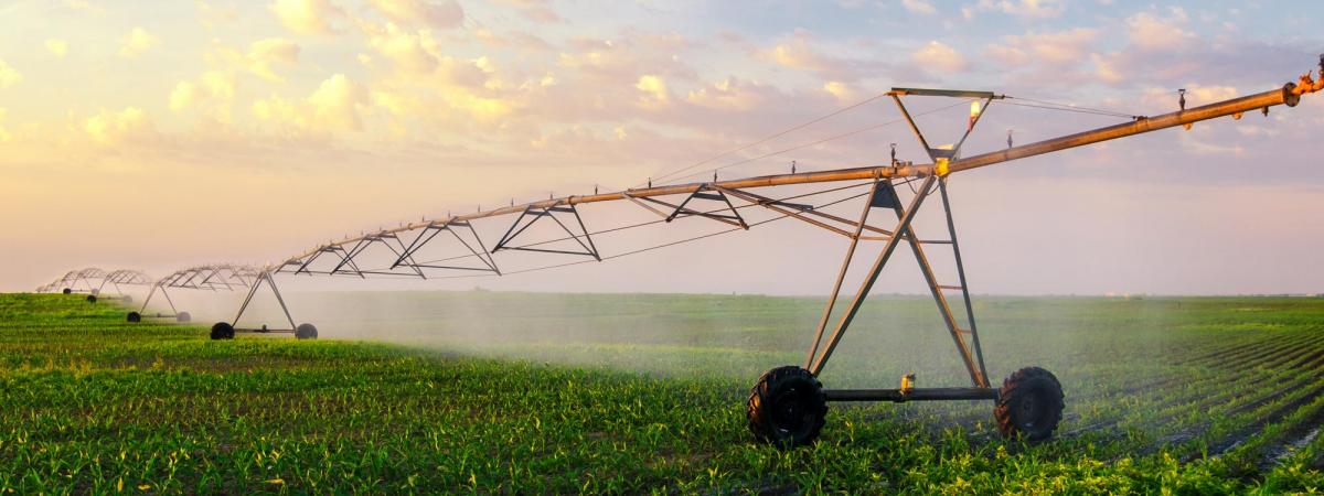 Irrigation pivot watering crops